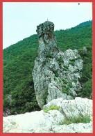 CARTOLINA NV ITALIA -  VIOLA (CN) Mt. 830 - Rocca Dei Corvi - 10 X 15 - Cuneo