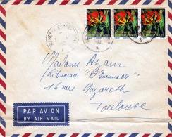 LP-Brief NIAMEY (Niger) 1960 - 3 Fach Frankiert, Gel.n.Toulouse - Niger (1960-...)