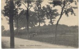 OMAL (4252) Les Tombes Romaines - Geer