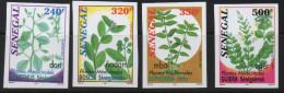 Sénégal 2001 IMPERF NON DENTELES Plantes Médicinales Medicinal Plants Heilpflanzen Flora Flore Mi. 1934-1937