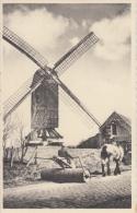 DE HAAN   De Oude Molen   Trekpaard        Scan 8111 - De Haan