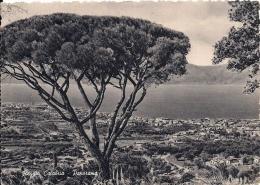 REGGIO CALABRIA  Fg - Reggio Calabria