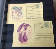 Set of 2 unused postcards - carnivorous plants nepenthes pitcher plant