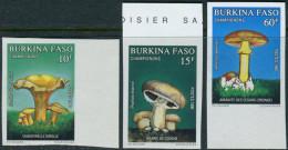 Burkina Faso 1990. Michel #1231/33 MNH/Luxe. Imperf. Mushrooms