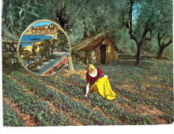 CARTE PARFUMEE ... GRASSE ... PARFUMERIE FRAGONARD ...  CANNES - Modern (from 1961)