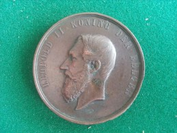Exposition Universelle D´Anvers 1885, Agriculture (Baetes), 42 Gram (medailles0033) - Autres