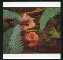 Antigua and Barbuda 1986 Mi Bl 116 imperf proof  MNH
