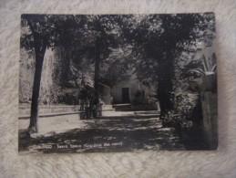 Subiaco - Sacro Speco - Giardino Dei Corvi 1956 - Other