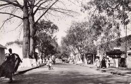 THIES (Senegal) - Belebte Strassenansicht - Senegal