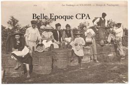 Les VENDANGES En SOLOGNE - Groupe De Vendangeurs ++++ ND Phot., #162 +++++ RARE / TOP CPA - Centre-Val De Loire