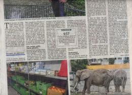 page dna theme zoo bale elephant
