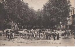 LE MARCHE  ( Promenade Du Mail ) - Voiron