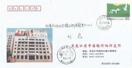 China 2003 Zhalong Crane PAP 2003-0802(PF)-0142(1-1) First Day Postal Stationary Cover - Kranichvögel