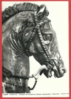 CARTOLINA NV ITALIA - PADOVA - Dettaglio Del Condottiero Erasmo Gattamelata - Donatello - 10 X 15 - Sculture