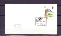 Great Britain  - The Wildfowl & Wetlands Trust - Lianelli Dyfed 19/1/93    (RM5758) - Cygnes
