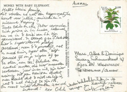 Sri Lanka 1997 Medicinal Herb Rauvolfia Serpentina Viewcard - Sri Lanka (Ceylon) (1948-...)