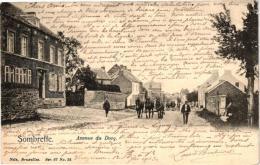NAMUR   1 CP Sombreffe   Avenue Du Docq   1903  Nels Ser 67 N°22  Attelage Chevaux - Sombreffe