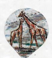 opercule  de creme girafe