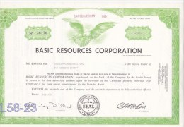 Shares: USA  1975 Basic Resources Corp. 250 Shares (L58-23) - Shareholdings