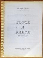 Synopsis - Joyce à Paris - Projet De Téléfilm De 2x 90 Mm - JP Production - 20 Pages Sous Spirale - Unclassified