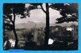 CARPENTRAS (Vaucluse) VUE SUR LE MONT VENTOUX. - 1955 - - Carpentras