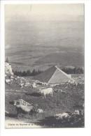 L1674 -  Chalet Du Suchet Et La Plaine  Vaches - VD Vaud