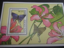 Maldives-Butterflies - Papillons