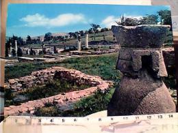 PIACENZA VELLEIA ROMANA  MACINA DEI CEREALI N1970 EL8276