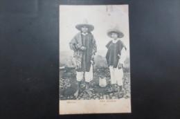 Mexico   Indios Labradores - Mexique