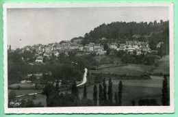 19 AYEN - Vue Panoramique Prise Du Temple - Otros Municipios