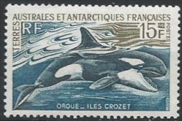 TAAF - Orque Neuf LUXE - Französische Süd- Und Antarktisgebiete (TAAF)