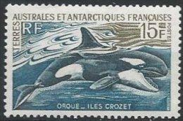 TAAF - Orque Neuf LUXE - Terres Australes Et Antarctiques Françaises (TAAF)