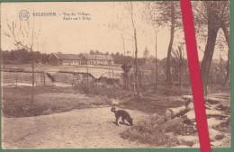 RELEGEM - RELEGHEM  Vue du Village - Zicht uit �t Dorp -  Edit. FLION - 2 scans