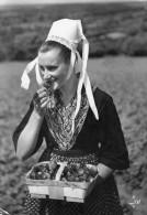 29 -  ¨PLOUGASTEL-DAOULAS - Jeune Fille En Costume De Plougastel à La Cueillette Des Fraises . - Plougastel-Daoulas