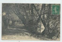 Auvers-sur-Oise (95) : Chemi En Sous Bois Sur Les Bords De L'Oise En 1910 (animé) PF. - Auvers Sur Oise