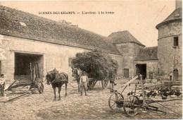SCENES DES CHAMPS L Arrivee A La Ferme - France