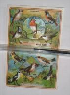 Lot De 2 Chromos Sur Les Oiseaux (passereaux Et Pigeons) - Birds - Cromos