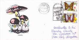 BUTTERFLIES & MUSHROOMS, SPECIAL CANCELATION, 1992, CLUJ-NAPOCA, ROMANIA - Schmetterlinge