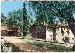 En Provence - Vieux Mas Provençal (13) - France