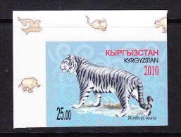 KGZ-    32    KYRGYSZTAN – 2010 TIGR