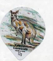 opercule  de creme theme kangourou