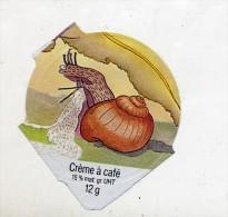 opercule  de creme theme escargot