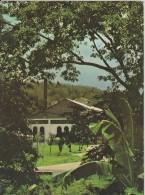Ile De La Réunion,ile Française,outre Mer,archipel Des Mascareignes,océan Indien,ile,DISTILLERIE,OL D NICK DILLON - Saint Pierre