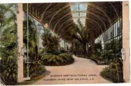 Interior Horticultural Hall - Audubon Park - New Orleans (Voir Cachet Au Verso: Occupation De La Lorraine) - New Orleans