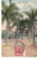 CPA. .BAHAMAS  .  VICTORIA AVENUE...1916...TBE...SCA N - Bahamas