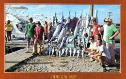 - CPSM -  OREGON - INLET FISHING CENTER - 641 - Non Classés