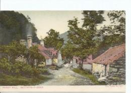 Pandy Mill  Bettwys-Y-Coed Vine Series No 227 Printed In Berlin Unused  Both Sides Shown - Wales