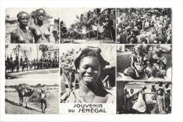 10113 -  Souvenir Du Sénégal  Jeunes Filles Carte Multivues - Sénégal
