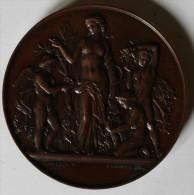 Grosse Médaille Cuivre Sociéte  Horticole D´Eure Et Loir Mlle SORAN 1873 - Professionals / Firms
