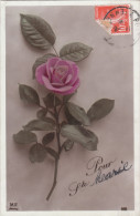 Carte Postale Ancienne Fantaisie - Fleurs - Rose - Pour Ste Marie - Fantasia